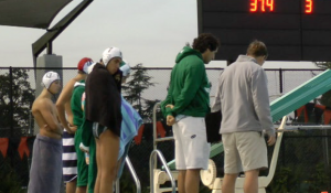 Palo Alto boys' water polo searches for new coach