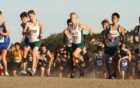 Cross-country preview: racing to victory