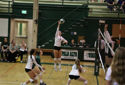 Paly volleyball falls to the Homestead Mustangs in three sets