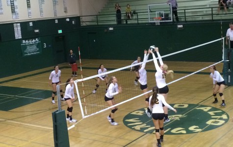 Paly volleyball falls short in five sets against Mountain View