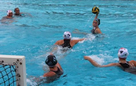 Girls' water polo sustains tough loss to Gunn on senior night