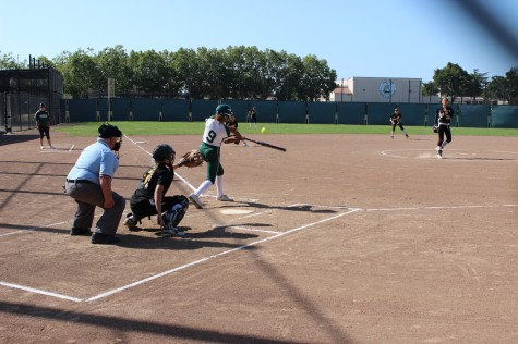 Paly softball falls to Mountain View on senior night