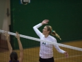 Paly Voleyball