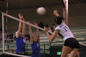 Paly volleyball beats Los Altos in three games