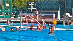 Paly girls' water polo defeats Monta Vista 14-2