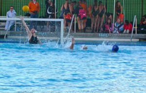 Girls' water polo falls to Los Altos in SCVAL quarterfinals, 9-3