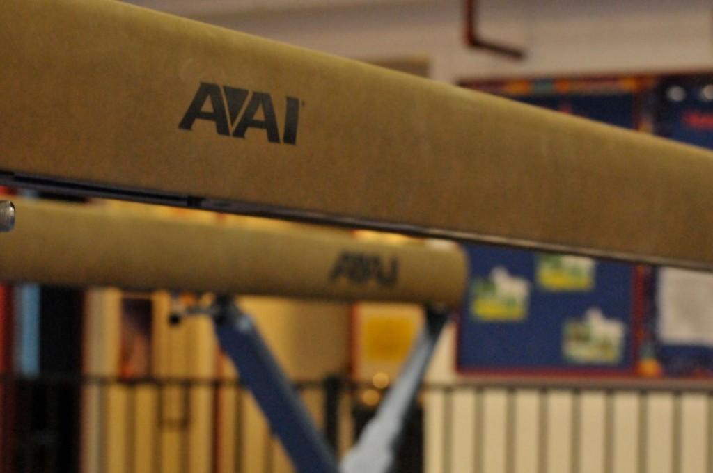 Gymnastics+prepares+for+competition%2C+starting+season+in+San+Francisco