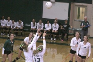 Volleyball season preview: team looks to returning players to build with new players