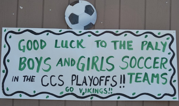 Signs like this one posted around the Paly campus offered the girls team encouragement for CCS. However, now that the team has violated a CCS regulation the Vikes' season is over.