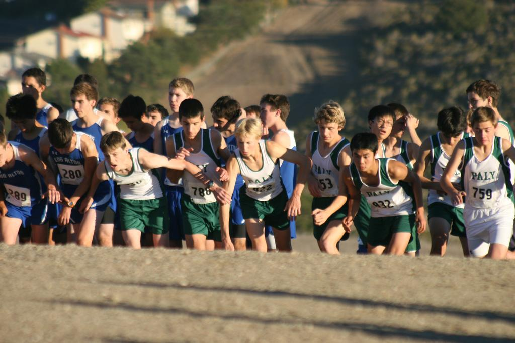 The+boy%27s+cross-country+team+starts+the+varsity+race+at+the+Cystal+Springs+2.95+mile+course.+They+finished+fourth+in+the+SCVAL+El+Camino+division+league+championships.+