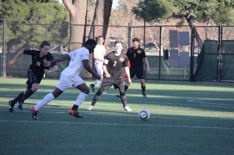 Paly boys' soccer triumphs over Mountain View 5-0