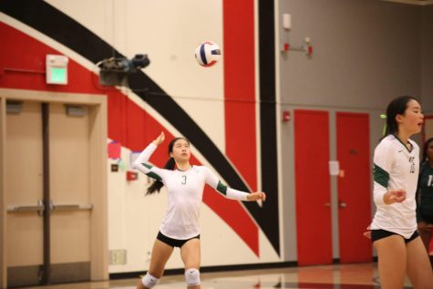 Girls Volleyball Beats Homestead In 3 Sets