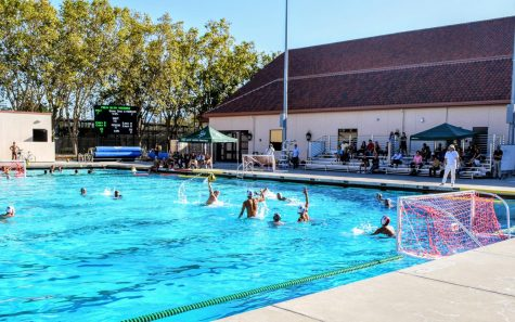 Boys Water Polo Beats Lynbrook in Nail-Biting Game