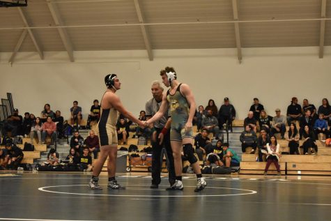 Wrestling takes fifth in the SCVAL tournament