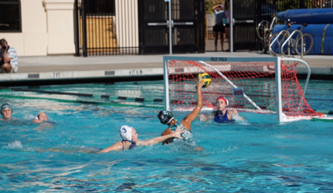 Girls Water Polo Defeats Carlmont 8-2 in First Game of the Season