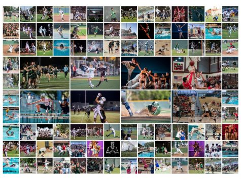 100 Paly Sports Photos over 4 Years