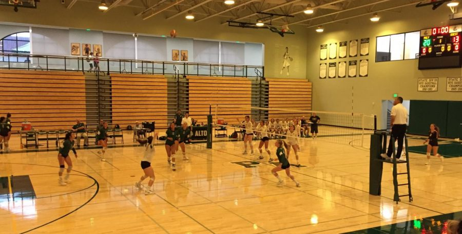 Paly+players+prepare+to+return+a+serve+from+the+Mountain+View+Spartans.
