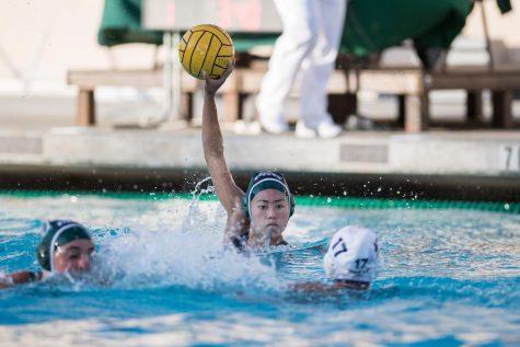 Girls Water Polo 2019 Season Preview