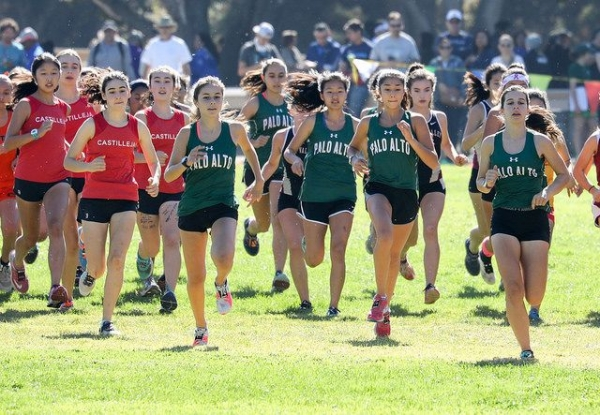 Cross Country 2019 Season Preview