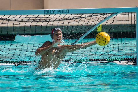 Paly Boys Water Polo Team Defeats Los Gatos on Senior Night