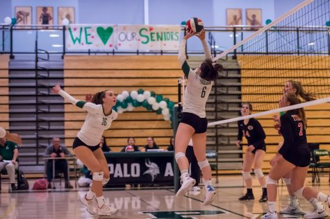Girls volleyball dominates Gunn on senior night