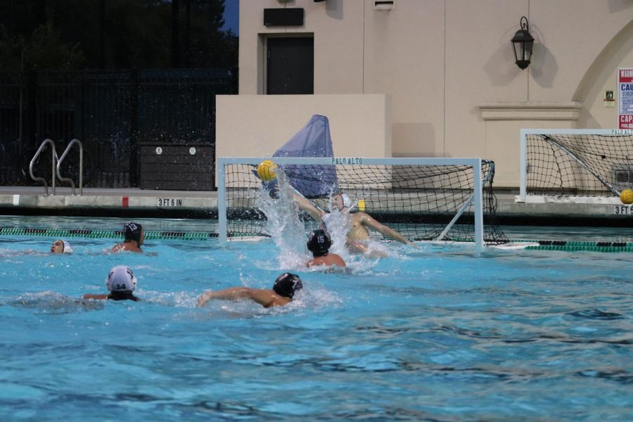 Boys Varsity Water Polo Wins First Game of the Season Against Homestead