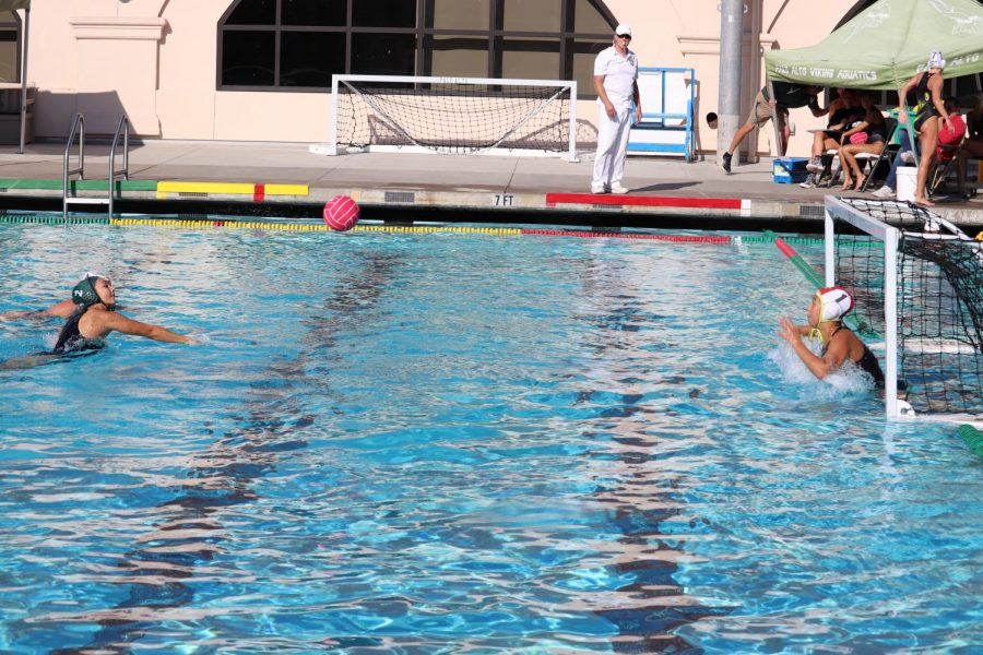 Girls Water Polo Defeats Mt. View 12-4